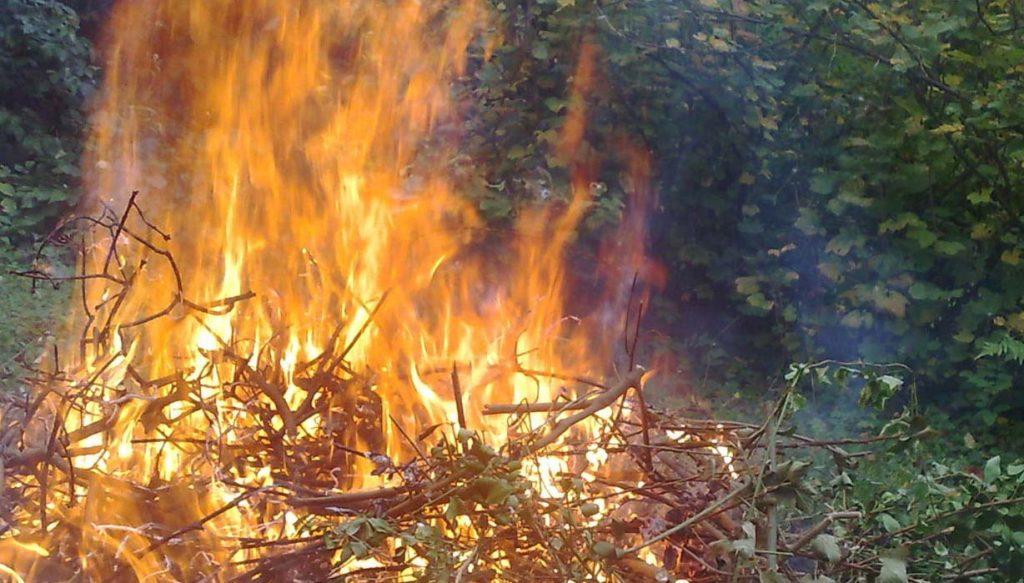 interdiction du brûlage des déchets verts
