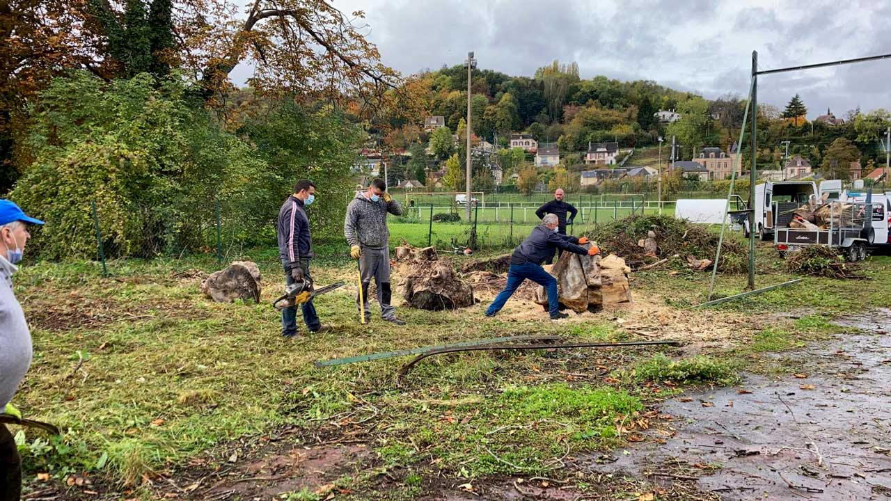 Chantier solidaire : Le tronc du marronnier tombé était un très gros tronc